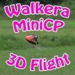 Walkera Mini CPの3Dフライト