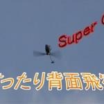 Super CPでまったりと背面飛行