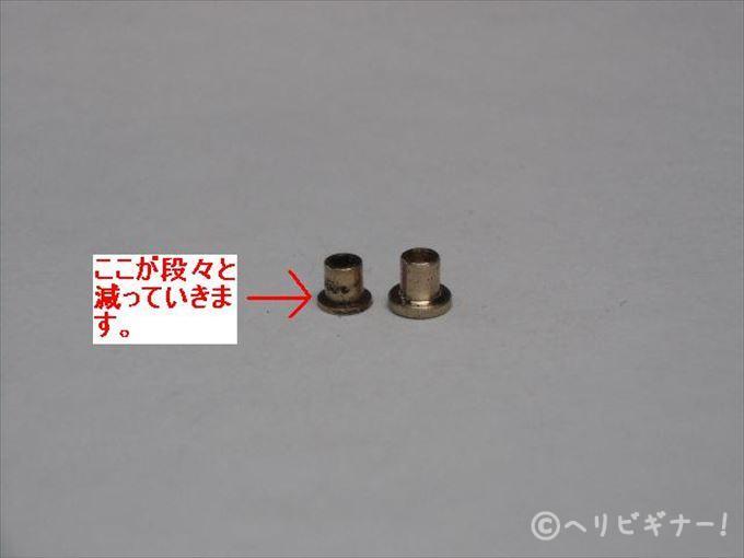 CIMG1293.jpg